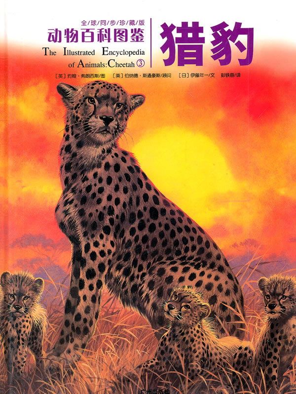 猎豹彩色简笔画