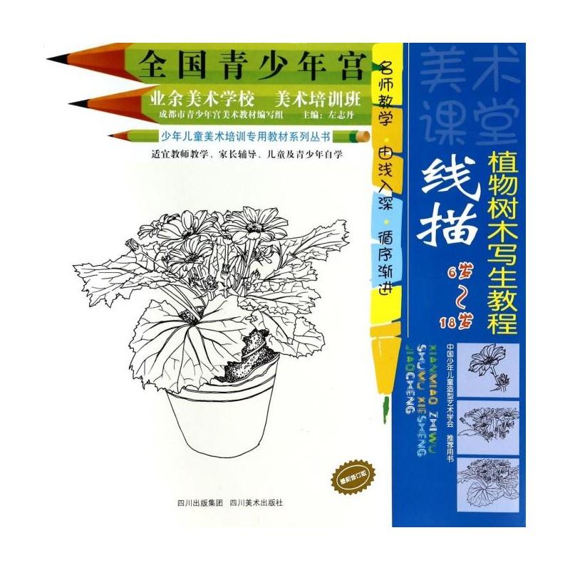 线描植物树木写生教程(修订版6岁-18岁)/少年儿童美术