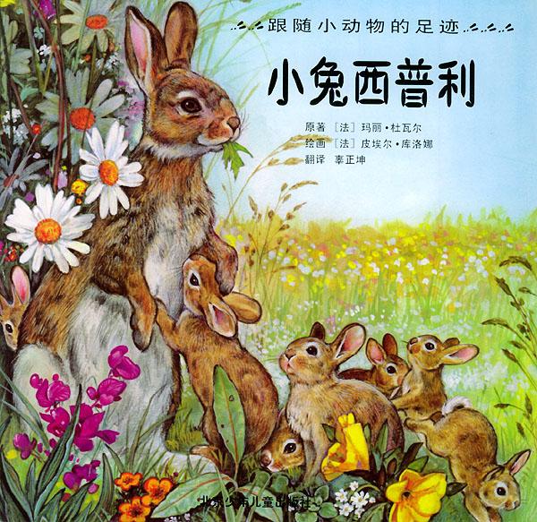 小兔西普利——跟随小动物的足迹(注音版)