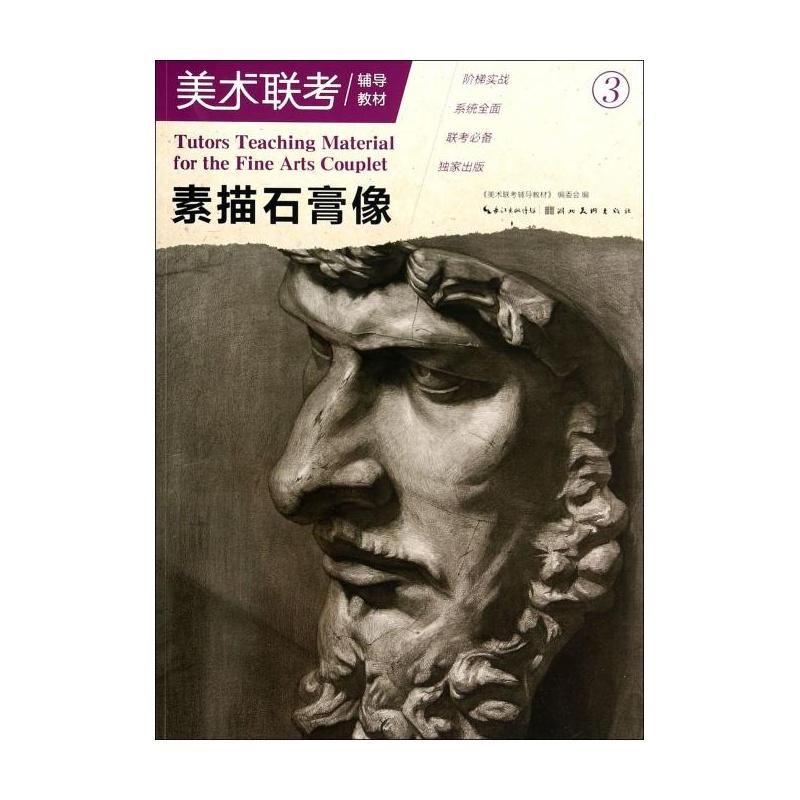 《素描石膏像(美术联考辅导教材)》