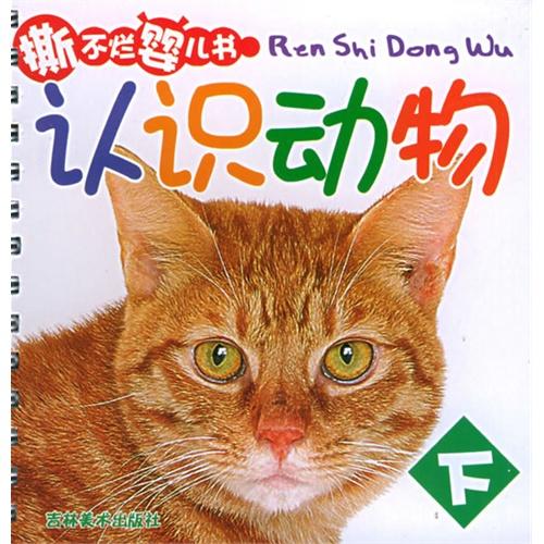 认识动物(下)——撕不烂婴儿书