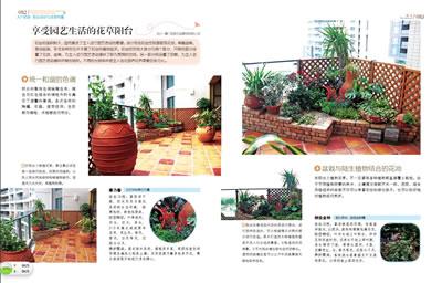 【th】入戶花園 陽臺設計與花草布置:人氣小花園案例,花草布置與養護