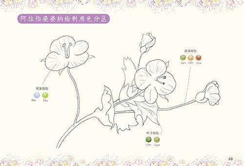 有时间一起来画画:色铅笔花卉卷 麦小朵著 9787515324241