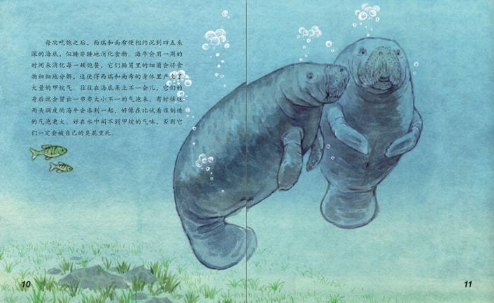海洋传奇国语_海洋动物探秘故事丛书--时代图书网-timesbook:北美网上购物 ...