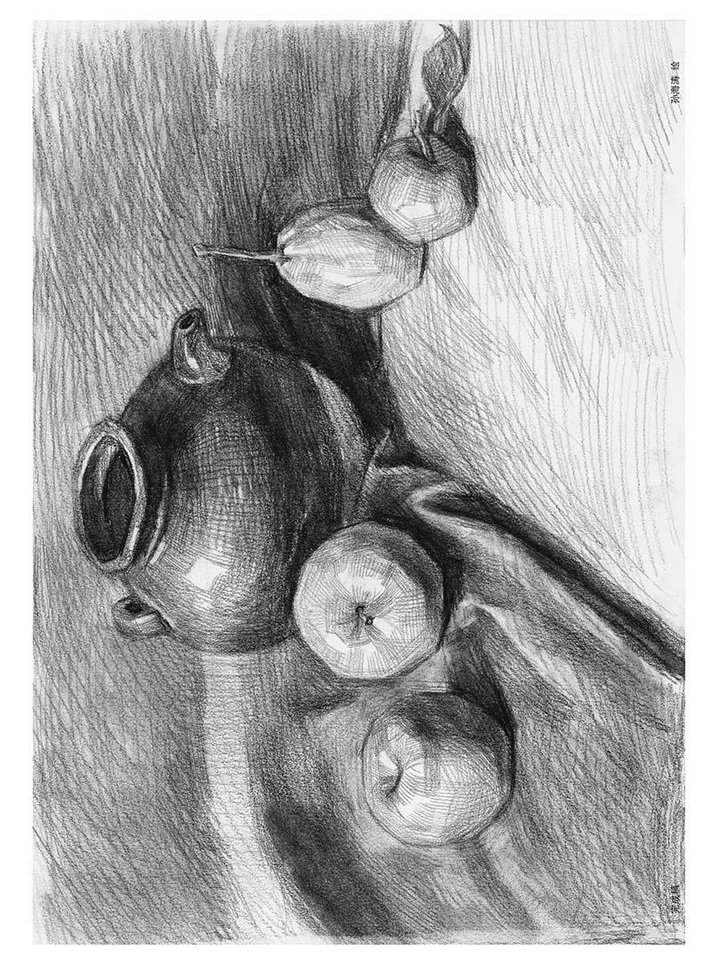 《凤凰美术绘画教程 青少年绘画起航(2)-素描静物图片