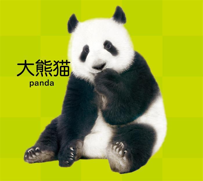 壁纸 大熊猫 动物 狗 狗狗 700_622