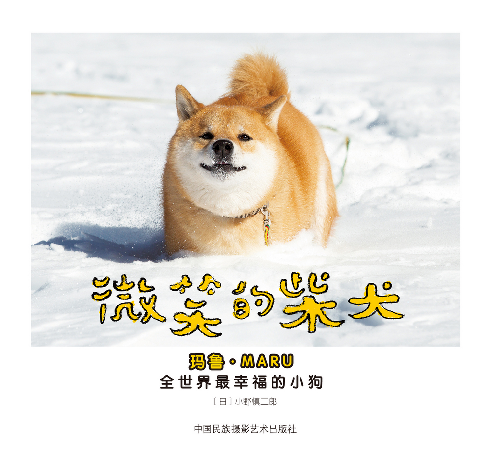 微笑的柴犬:全世界最幸福的小狗 (日)小野慎二郎 9787512207004
