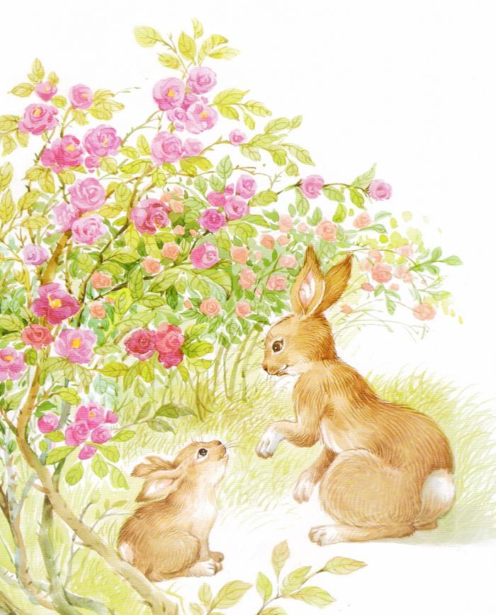 fun书 小兔子豁豁耳  小兔子刚出生没几天,就被大黑蛇在耳朵上咬了一