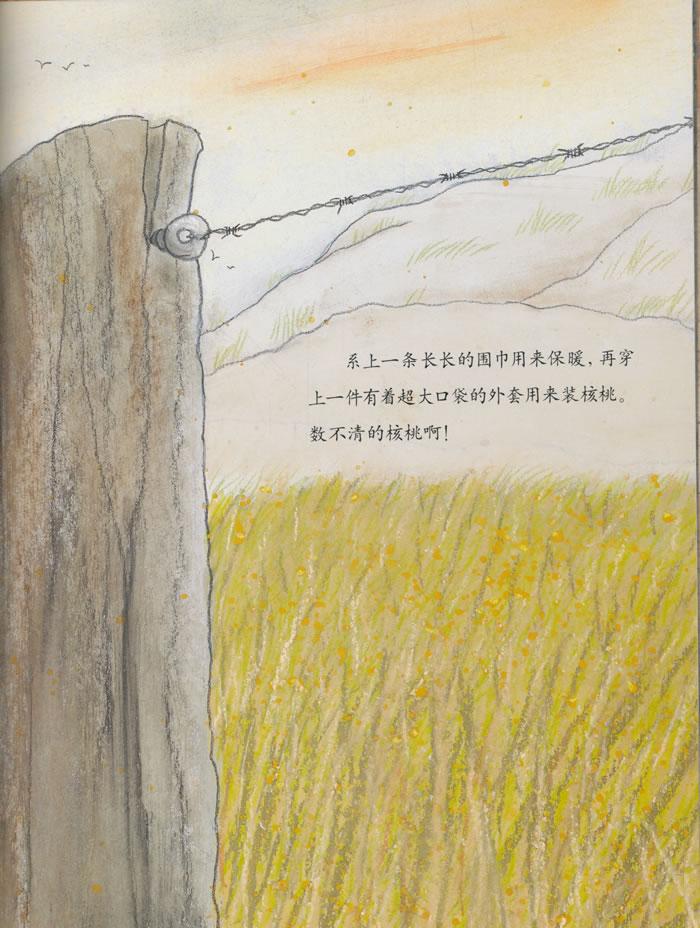 《来自伦勃朗和梵高故乡的图画书·核桃》
