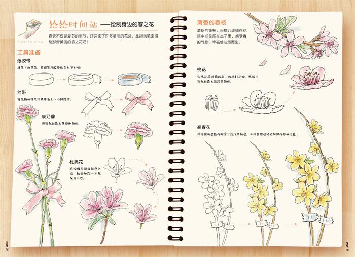 色铅笔的温情手绘,我的花花草草