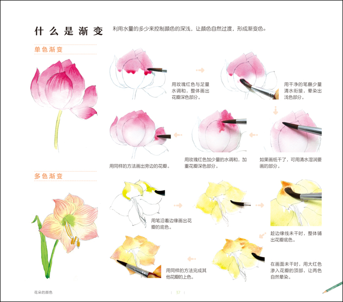 水彩入门必学500例 花卉篇