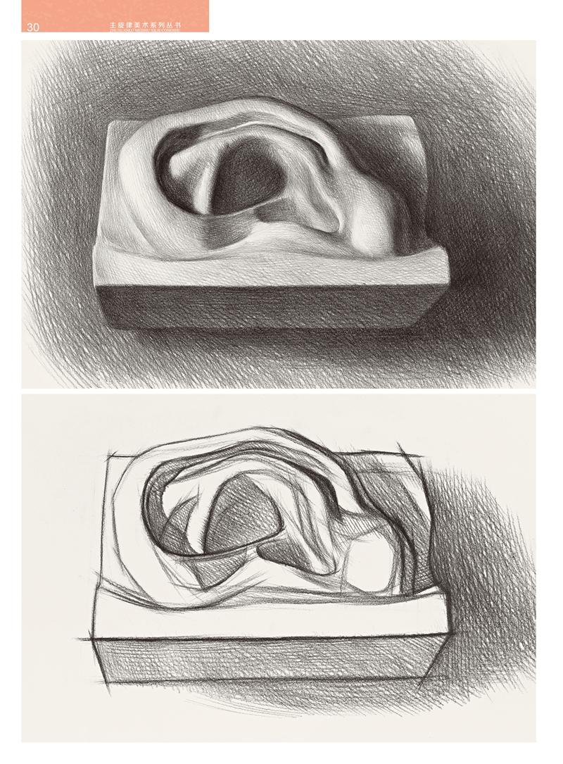 耳朵结构 手绘