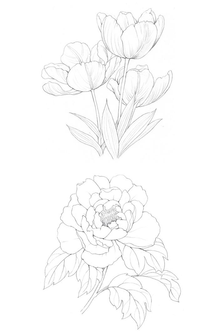 素描图片简单一点的花-花的简笔画铅笔图片