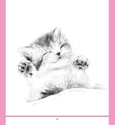 一日一画·素描——可爱动物
