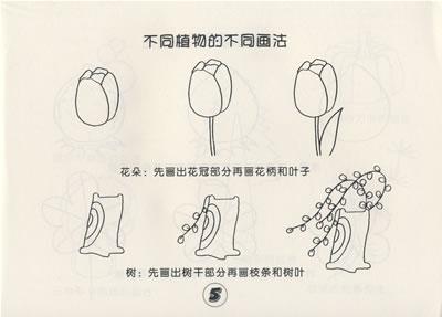 (儿童简笔画)水果植物简笔画步骤图片3