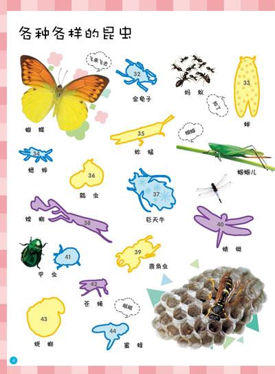 动物(韩国三大图书网店幼儿