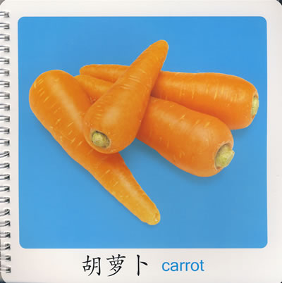 小海豚宝宝早教圈圈书(基础篇):认识蔬菜