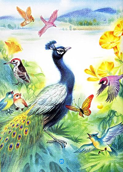如一幅图画把孩子们带进山林——那儿正是小动物们欢们的世界.