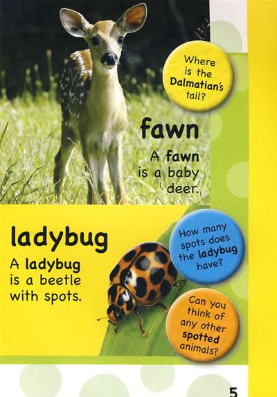 《动物的语言:animal talk》sue