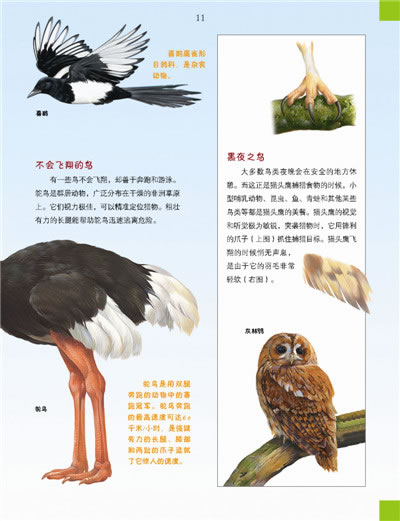 我的第一本百科全书.奇趣动物世界