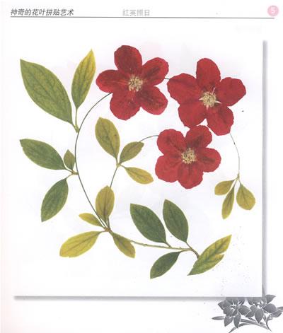福禄芳园 贴画前的准备 画框的制作 制作贺卡和书签 本书用的叶子 本