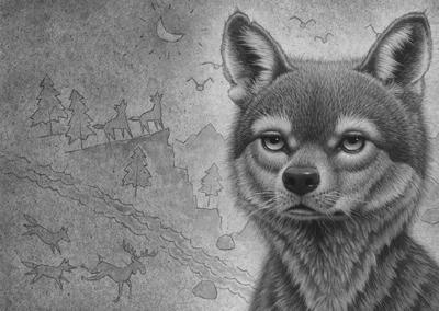 正版绝境狼王系列5冰川狼魂(《猫头鹰王国》作者,