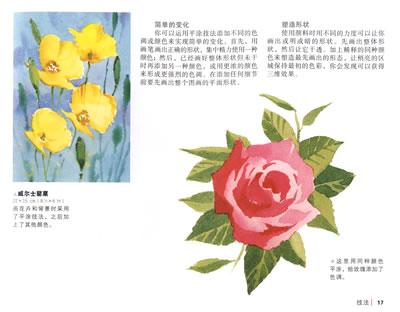 柯林斯30分钟水彩花卉